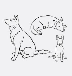 german shepherd pet dog animal hand drawing vector image vector image
