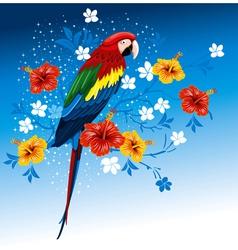 bright parrots vector image vector image
