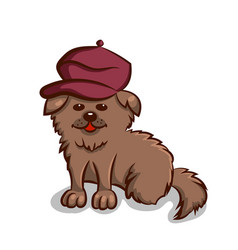 small dog in beret vector image