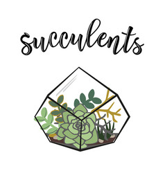 a succulents poster vector image vector image