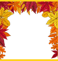 border with autumn leaves design element for vector image