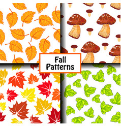 colored fall pattern vector image