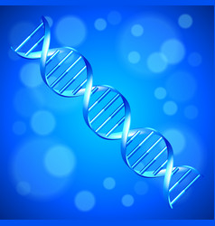 human dna background vector image