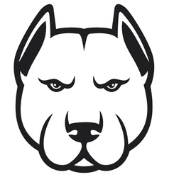 Pit bull head vector
