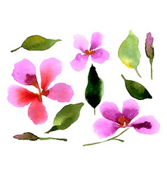 With orchid watercolor hand drawn vector