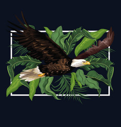 eagle in the forest vector image vector image