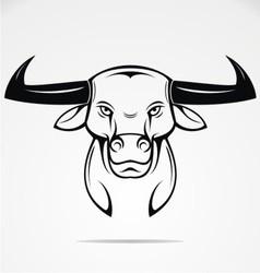 Bulls Head Mascot vector image