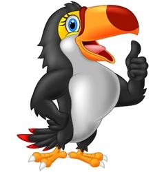 Cartoon toucan gives thumb up vector image