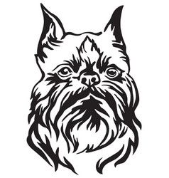 decorative portrait of dog brussels griffon vector image