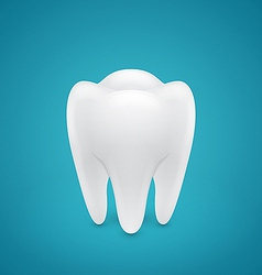 Healthy human tooth vector image
