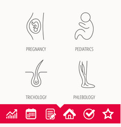 Pregnancy pediatrics and phlebology icons vector