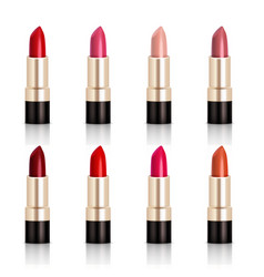 lipstick assortment set vector image