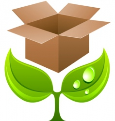 sprout with box vector image vector image
