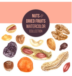 Background with nuts and dried fruits vector