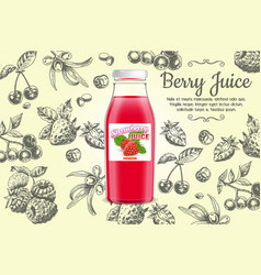 berry juice poster design template vector image