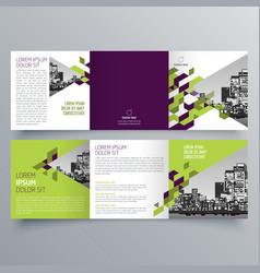 brochure design 618 vector image