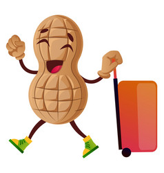 peanut going on trip on white background vector image