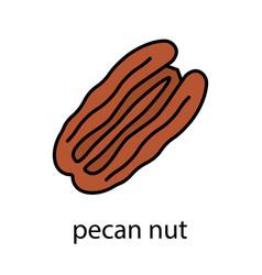 Pecan nut color icon vector