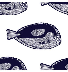 Surgeonfish pattern in hand-drawn style vector