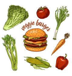 Vegan vegetable burger sandwich ingredients vector