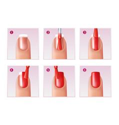 manicure process set vector image vector image
