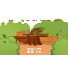Beaver sit stump wild animal sitting on fallen vector