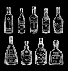 hand drawn different bottles vector image
