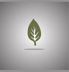 leaf green isolated vector image