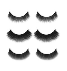 realistic false eyelashes set from top view - long vector image