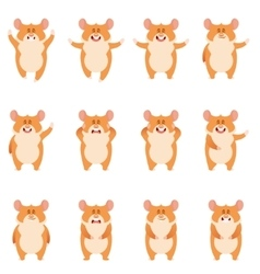 Set of flat hamster icons vector image vector image