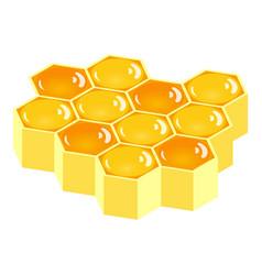 honeycomb icon isometric style vector image
