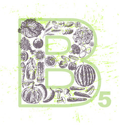 ink hand drawn fruits and veggies vitamin b5 vector image