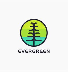 letter e for evergreen tree logo icon template vector image