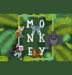 Monkey typographic poster vector