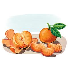 Tangerines vector