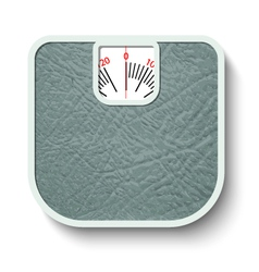 Bathroom wheight scales vector image