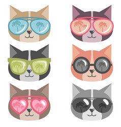 Cats with colorful sunglasses isolated on white vector
