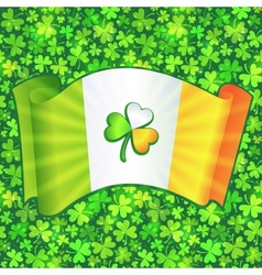 Celtic clover on Irish flag at green clovers vector image