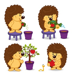 Hedgehog grow tree with apple vector