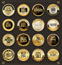 luxury retro badges gold and silver collection 1 vector image