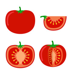 Tomatoes flat style on white background tomato vector