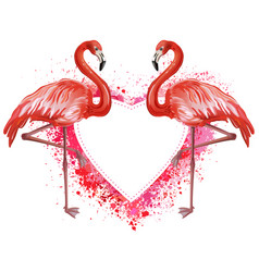 heart made of spray and flamingoes vector image vector image