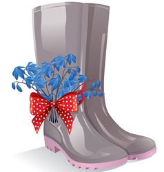 Rubber boots with bouquet primrose vector image vector image