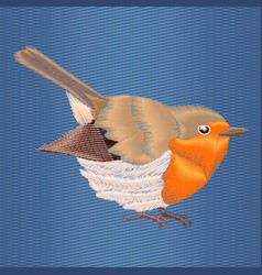 embroidery robin bird on blue denim background vector image vector image