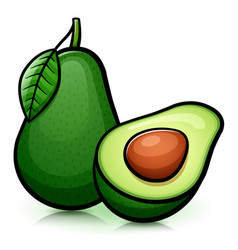 Avocado isolated design drawing vector