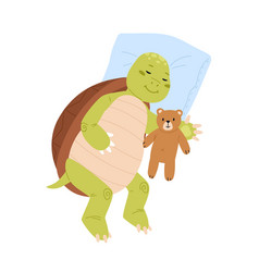cute and funny turtle sleeping with teddy bear vector image