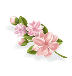 Realistic pink flower cherry lotos branch vector