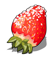 ripe red berry strawberries sprinkled with sugar vector image