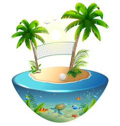 volleyball net between palms and ball on tropical vector image