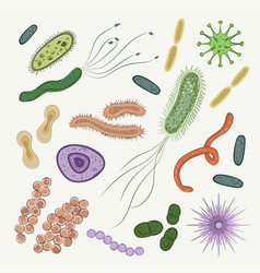 Bacteria virus germs icon set vector